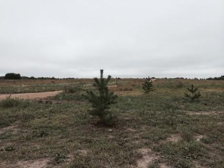 Фотографии местности — сентябрь 2014